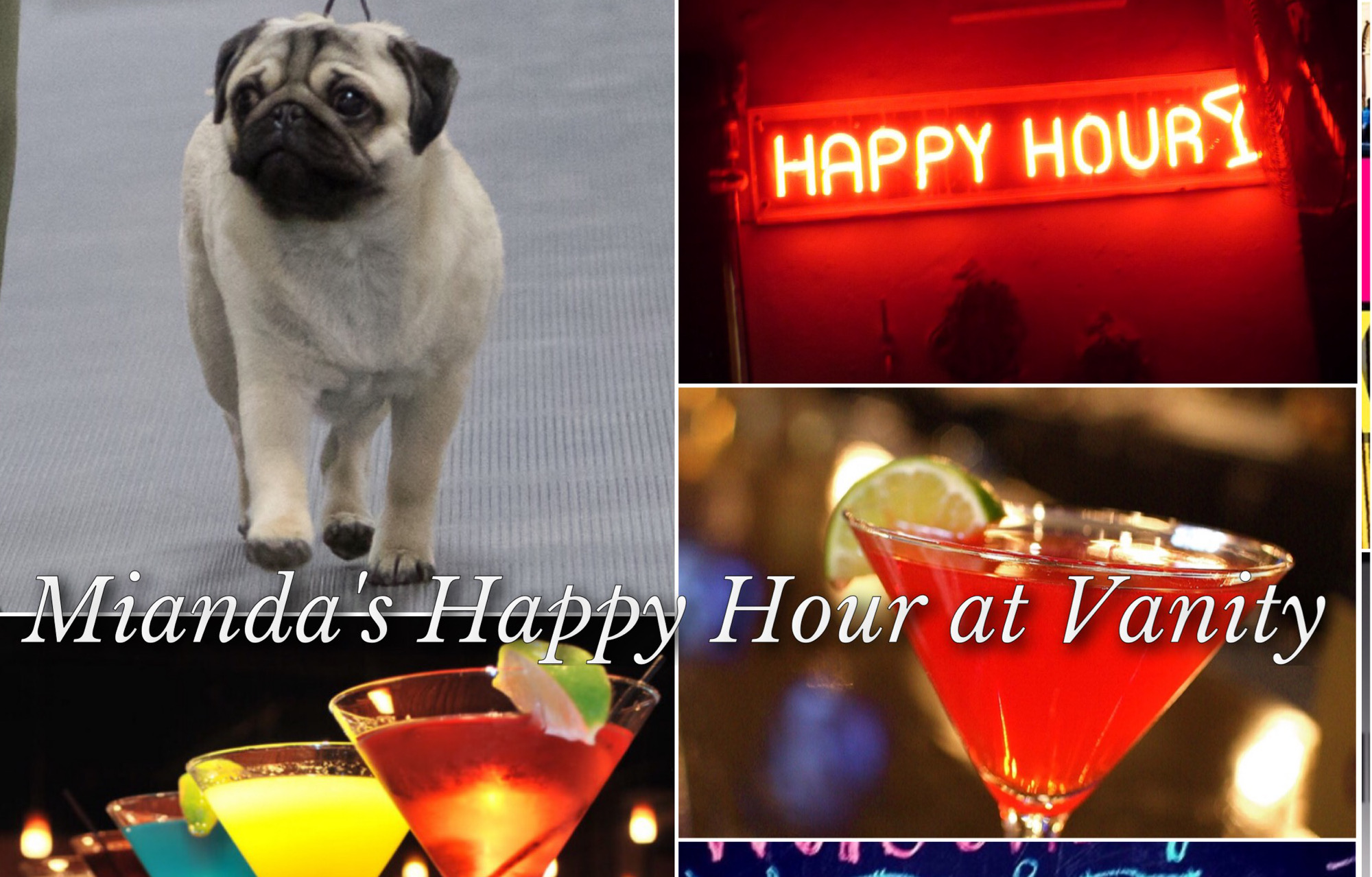 Vanity Pugs Martini collage