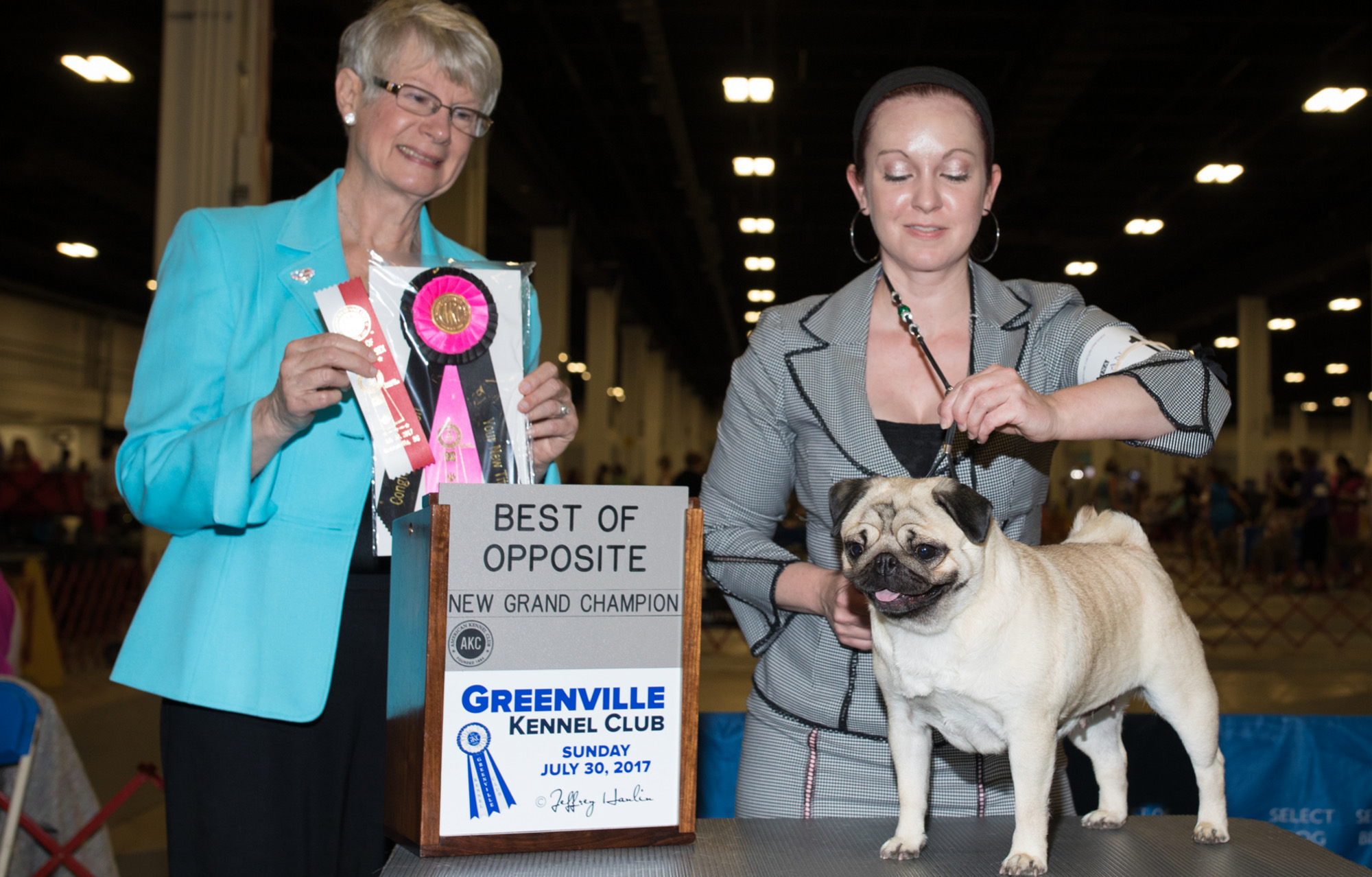 Vanity Pugs Bred-By Milan Grand Champion
